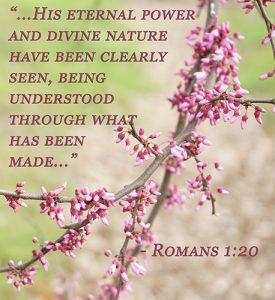 Rom.1:20